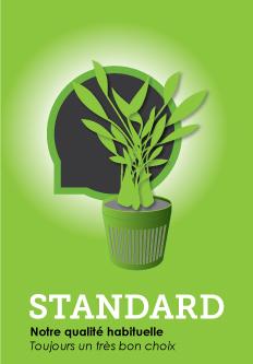 Gamme de plantes d'aquarium standard - notre qualité habituelle, toujours un très bon choix
