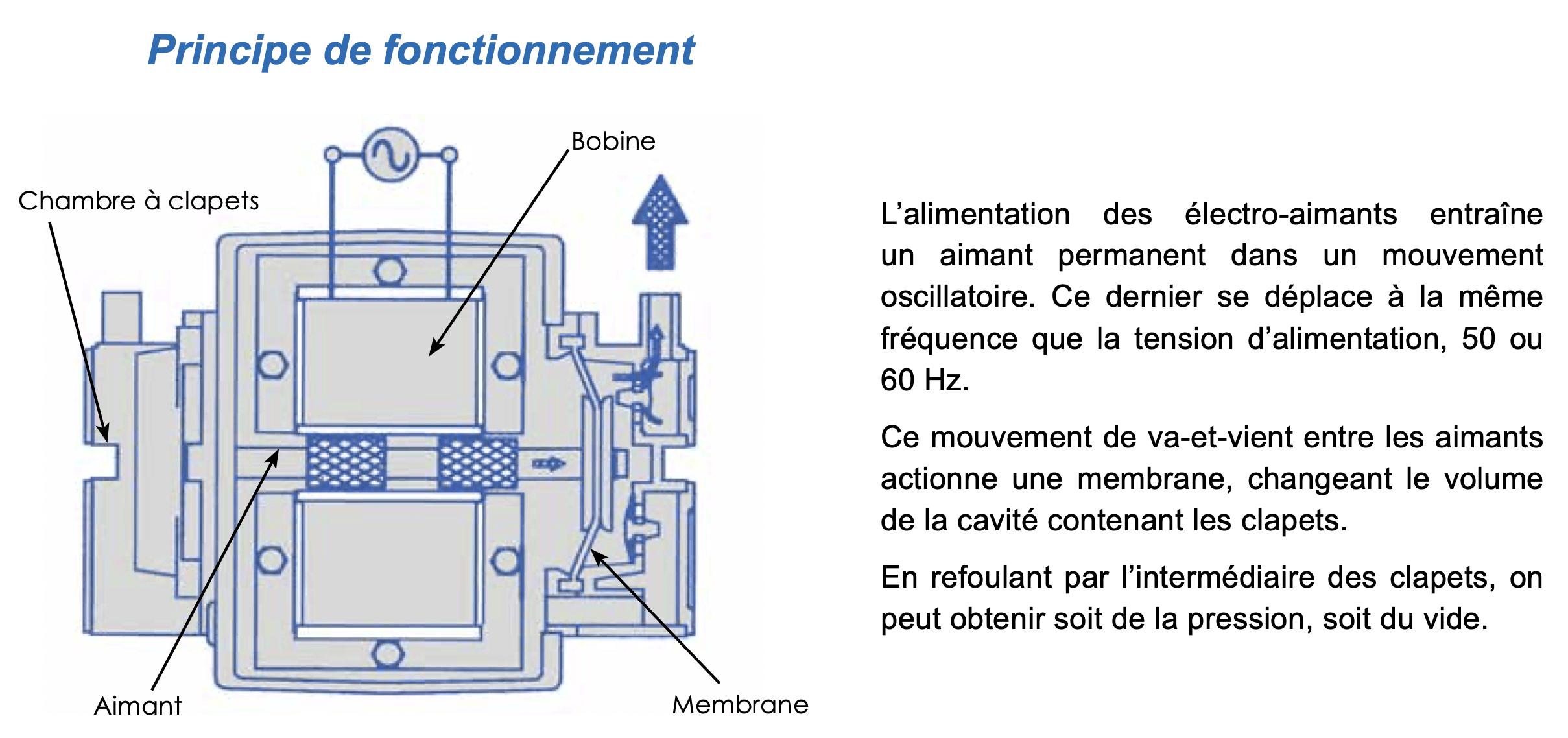 L'alimentation des électro-aimants entraîne un aimant permanent dans un mouvement oscillatoire. Ce dernier se déplace à la même fréquence que la tension d'alimentation, 50 ou 60 Hz. Ce mouvement de va-et-vient entre les aimants actionne une membrane, changeant le volume de la cavité contenant les clapets. En refoulant par l'intermédiaire des clapets, on peut obtenir soit de la pression, soit du vide.